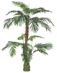 "<b>Artificial Plant Cycas Palm</b> Tree 59"" - Tropical - Artificial Plants And ..."