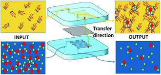 A microfluidic study of synergic <b>liquid</b>–<b>liquid</b> extraction of rare earth ...