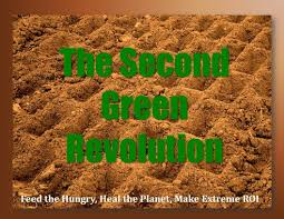 words essay on the second green revolution