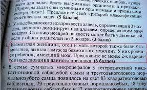 """В результате обстрела боевиками из """"Градов"""" Трехизбенки возле тубдиспансера загорелся сосновый лес, - Москаль - Цензор.НЕТ 9232"""