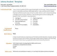resume for first job sample  tomorrowworld coresume