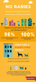 best ideas about world rabies day veterinary world rabies day love people love dogs hate rabies how civic society