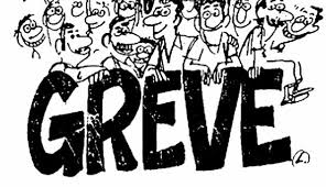Image result for greve servidores