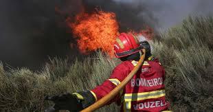 Jovem de 17 anos detido por atear incêndio em Penalva do Castelo e Mangualde