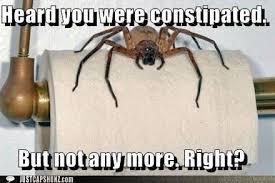Memes Vault Spider Memes | Because Funny! | Pinterest | Spider ... via Relatably.com