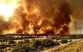 Compensaţii pentru familiile pompierilor răpuşi în incediul din Yarnell, Arizona
