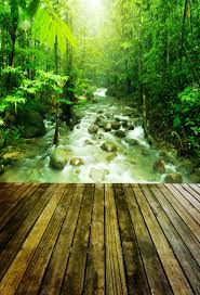 <b>Laeacco Spring Forest</b> River Trees Wooden Floor Scenic ...