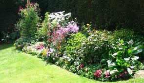 Small Picture Perennial Flower Garden Design Plans Design New Jersey Perennial