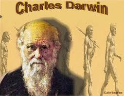 「Darwin」の画像検索結果