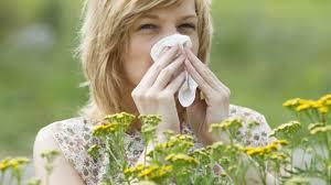 Risultati immagini per allergia polline