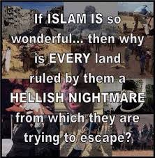 Anti-Islam Memes And The Hasty Generalization Fallacy http://www ... via Relatably.com