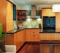 Different Kitchen Cabinets Kitchen Bamboo Kitchen Cabinets In Voguish Different Design With