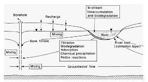 figure   schematic diagram of riverbank filtration   scientific    schematic diagram of riverbank filtration
