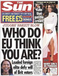 Image result for gina miller + thesun