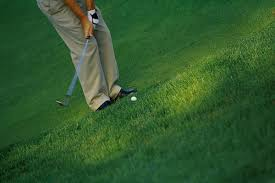 Image result for golf chip