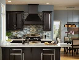Ideal Color For Living Room Ideal Kitchen Colors With Dark Cabinets Greenvirals Style