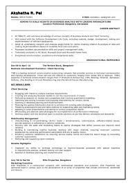 Simple Program Manager and Senior Business Analyst Resume for       program management resume