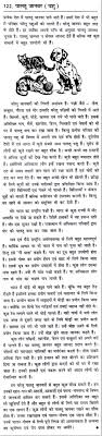 essay on pet animals in hindi