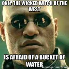 only the wicked witch of the west is afraid of a bucket of water ... via Relatably.com