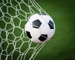 Image result for soccer goals