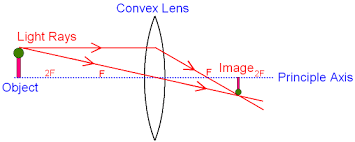 convex lens related keywords  amp  suggestions   convex lens long tail    convex lens related keywords  amp  suggestions   convex lens long tail keywords