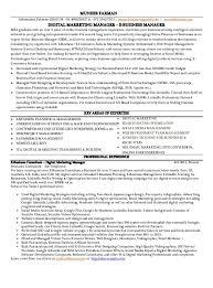 B b Resume Examples  example resume sales marketing resume  a gif     Resume CV Cover Leter   ipnodns ru sample resume marketing executive india resume