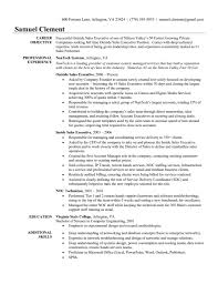 Sales Manager Resume Objective  territory sales manager job