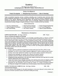 business development resume summary business development manager business development resume summary business development resume summary