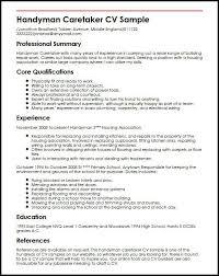 cv template examples writing a cv curriculum vitae templates cv     Sample Customer Service Resume