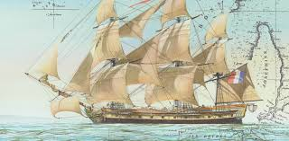 friday essay the voyage of nicolas baudin and art in the service friday essay the voyage of nicolas baudin and art in the service of science