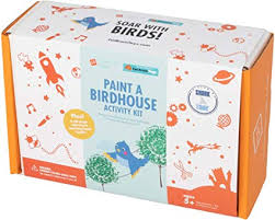 Surprise Ride Paint a Birdhouse Activity Kit STEM ... - Amazon.com