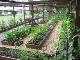 Small Picture Garden Plot Ideas 43 Best Gardening Ideas Images On Pinterest