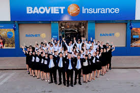 bao viet insurance the best workplace in non life insurance all of bao viet insurance s employees are entitled to comprehensive care and worthy rewards for their contributions via diversified experiences and