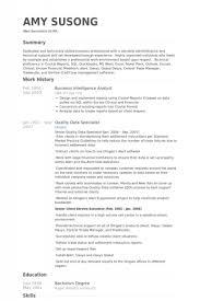 Logistics Resume Logistics Coordinator Resume Sample Logistics     job description for merchandiser  cover letter for government job         Business Intelligence Resume Cv Business Intelligence English Business Analyst  Resume Pdf Business Analyst Resume Samples Pdf