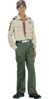 Bear Scout