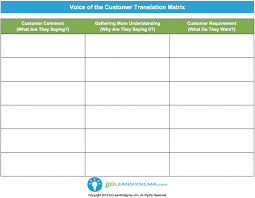 Voice of the Customer (VOC) Translation Matrix - Template & Example