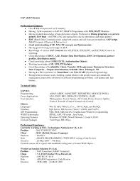 picturesque resume example professional summary as sap and magnificent