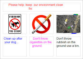 essay on keeping our environment clean  buy it now