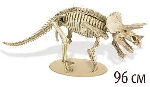 "<b>Конструктор</b> ""Трицератопс. ТиРекс Ворлд. T-Rex World"" | Купить с ..."