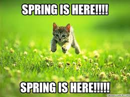 Image result for spring is here!