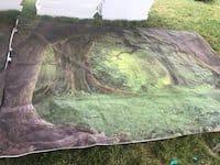 Used <b>Laeacco</b> Fairy Tale Green Forest Old <b>Trees</b> Grassland Baby ...
