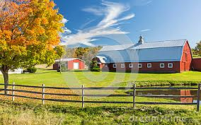 Image result for spring trees and barns