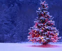 So Quaint and Christmassy! Images?q=tbn:ANd9GcQMVpprtIpVQqVqZ2RlXaQT0BmvX9paYJQVSJIUr6KTO0eZZlpw6w