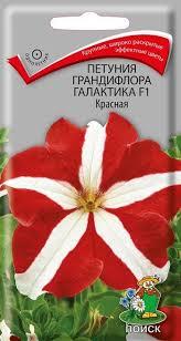 Купить <b>Семена</b> цветов Однолетник <b>Петуния грандифлора</b> ...