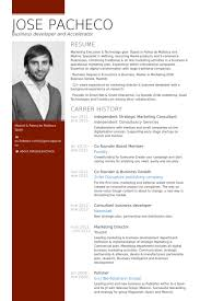 strategic marketing consultant resume samples   visualcv resume    independent strategic marketing consultant resume samples