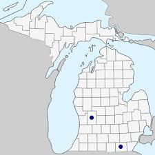Misopates orontium - Michigan Flora