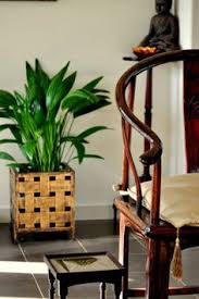 chinese style decor: a gorgeous chinese style chair planter buddha