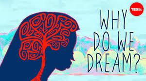 Why do <b>we dream</b>? - Amy Adkins - YouTube