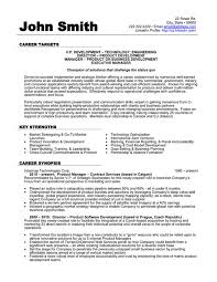 images about science resume templates  amp  samples on pinterest    click here to download this vice president of development resume template  http