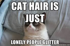 cat hair is just lonely people glitter - Grumpy cat good | Meme ... via Relatably.com